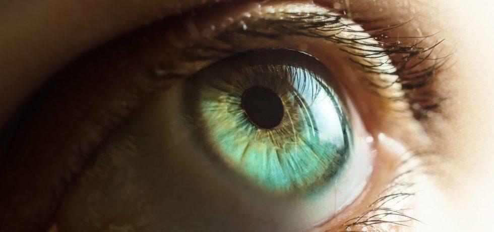 oeil clair close-up